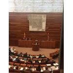 Inicio del Debate de la PNL en las Cortes de Castilla y León
